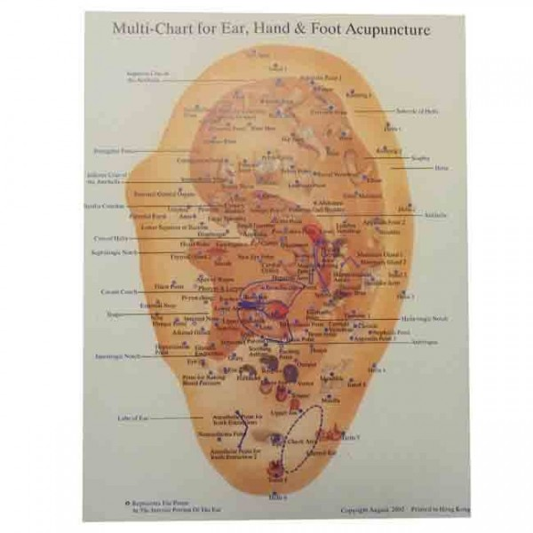 Acupressure Chart For Ear Hand and Foot