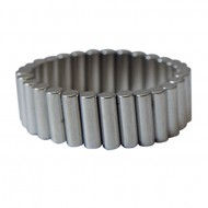 Magnetic POW-R-Ring
